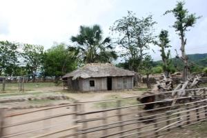 Ini adalah rumah-rumah di sepanjang jalan menuju Dili.